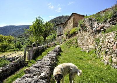 can-blanc-de-vilacireres-ecoturisme-rural-valls-del-pedraforca-4