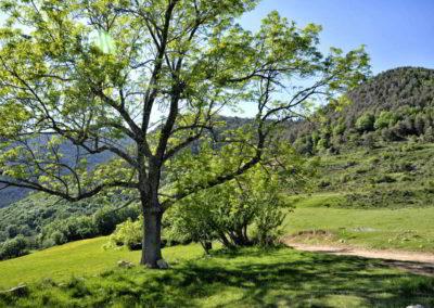 can-blanc-de-vilacireres-ecoturisme-rural-valls-del-pedraforca-aigua-de-valls-1